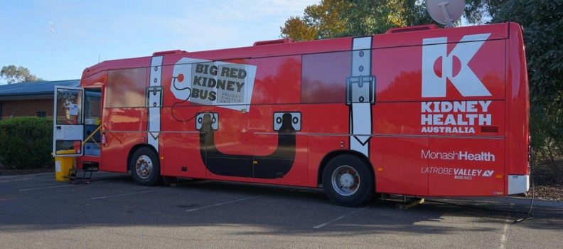 Big Red Kidney Bus